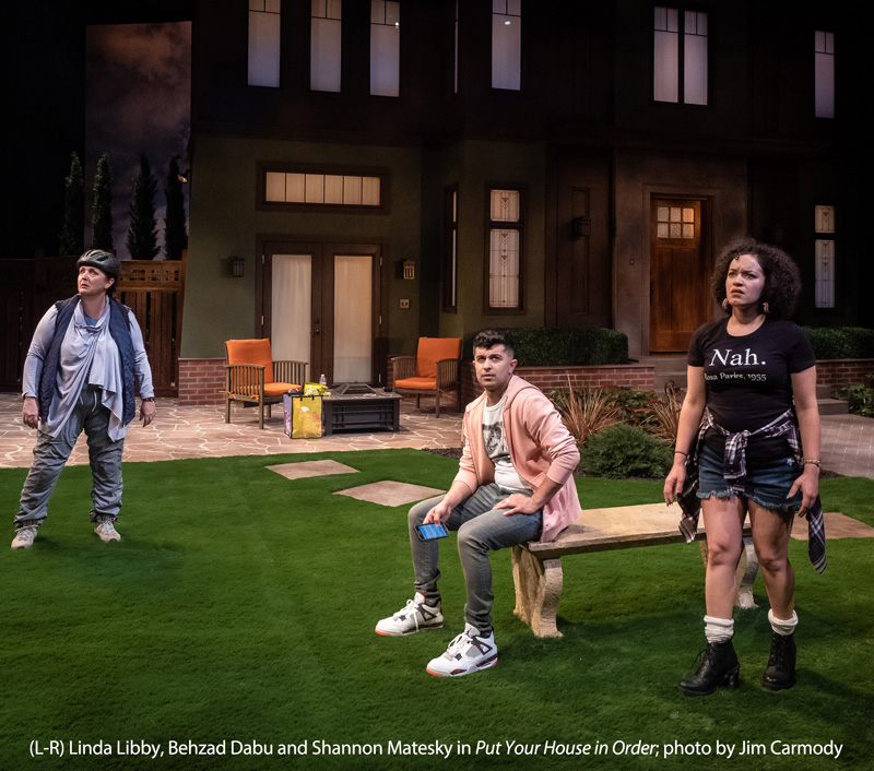 (L-R): Linday Libby, Behzad Dabu and Shannon Matesky in PUT YOUR HOUSE IN ORDER; photo by Jim Carmody
